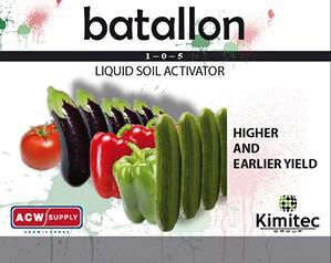 Kimitec Batallon (1-0-5)