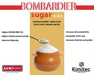 Kimitec Bombardier Sugar (4-0-0)